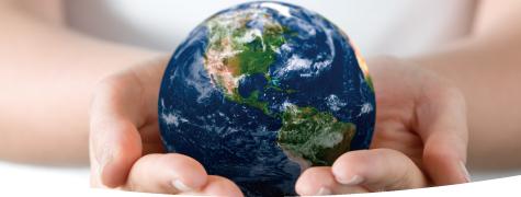 The SHS Environmental Club promotes a greener lifestyle