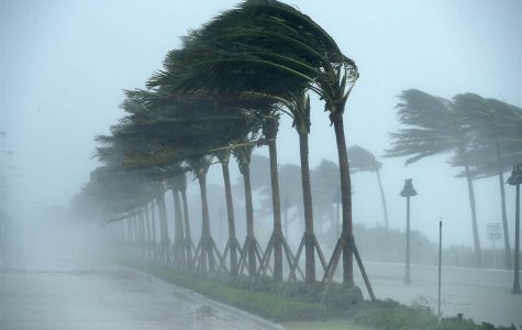 Hurricane Irma devastates south Florida