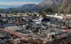 Wildfires decimate California