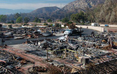 Wildfires decimate California